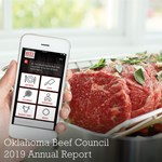 2019 OKBC Annual Report Cover Thumbnail